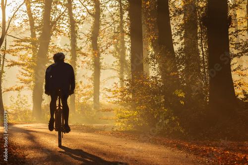 Ingelijste posters Fietsen Silhouette of a biker in fall