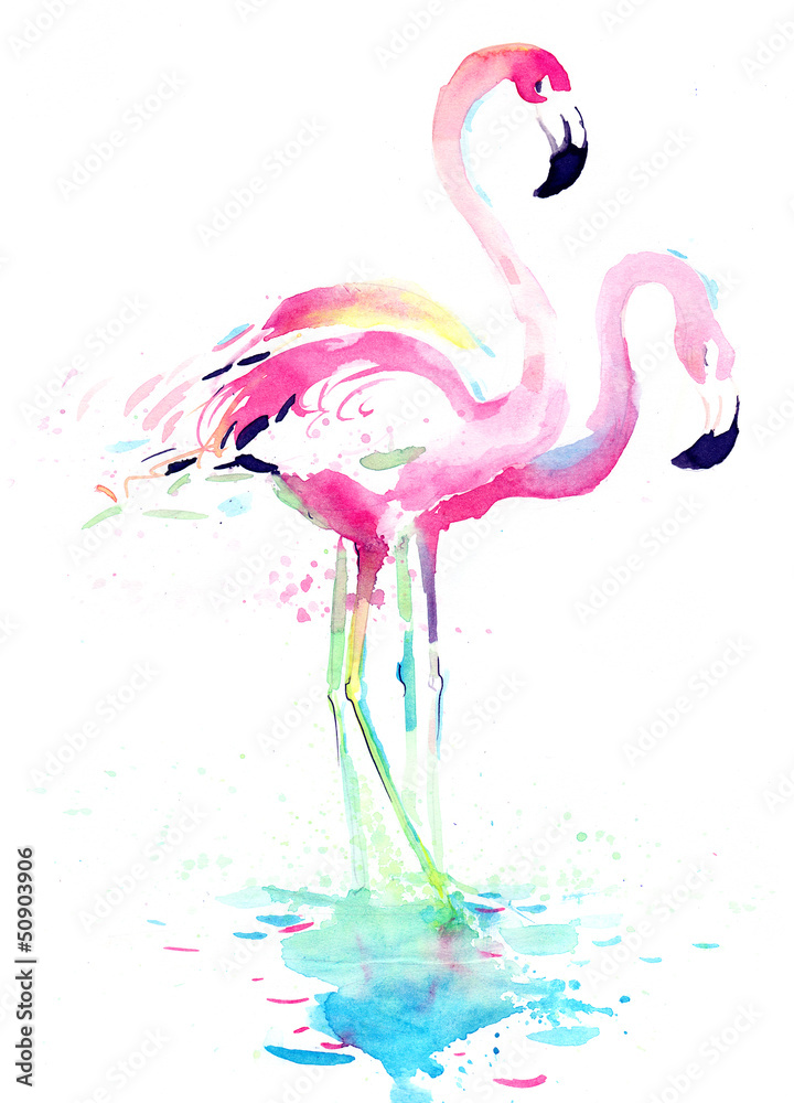 Fototapety, obrazy: Flamingi, akwarela