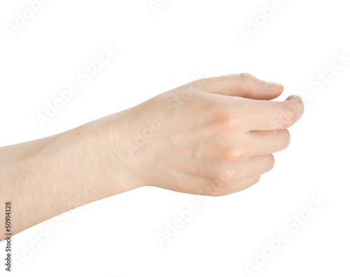 Fotografie, Obraz  hand hold something on a white background