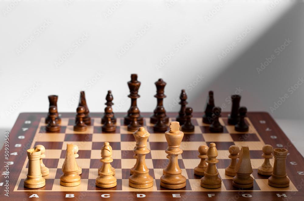 Schach - Aufstellung Weiß/Schwarz Poster | Sold at Europosters