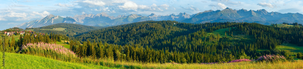 Fototapety, obrazy: Summer mountain country panorama.