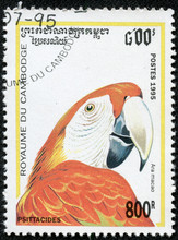 Stamp Printed By Cambodia, Sho...