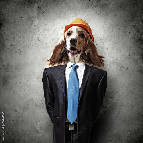 Funny portrait of a dog in a suit - 50964585