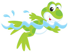 Funny Green Frogling Swimming ...