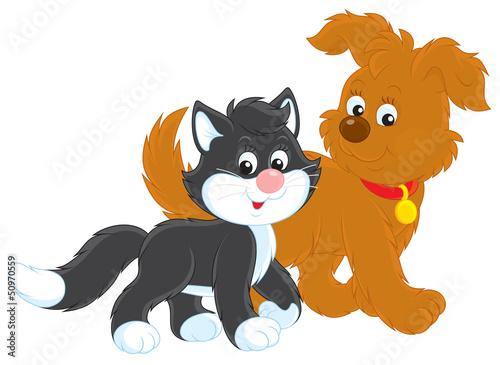Printed kitchen splashbacks Cats Dog and cat walk
