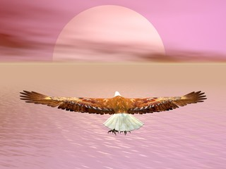 Panel Szklany Natura Eagle going to the sun - 3D render