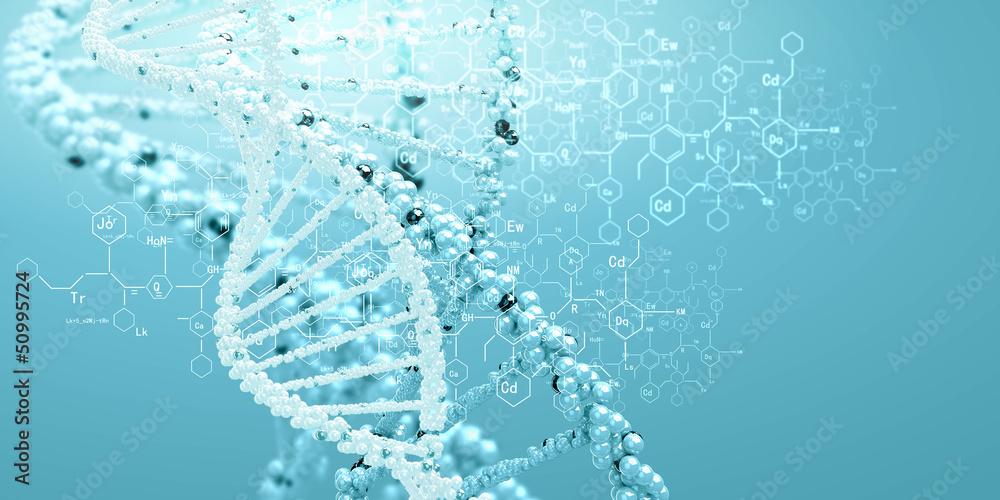 Fototapeta DNA molecule