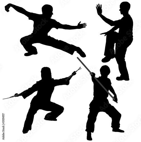 Stampa su Tela Kung Fu Fighter Silhouette