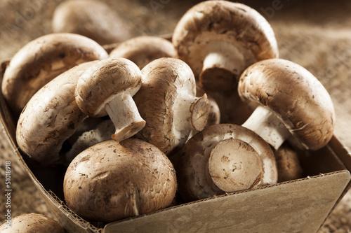 Photo Organic Brown Baby Bella Mushrooms