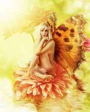 Fairy With Wings On A Flower