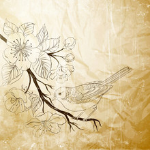 Hand Drawn Bird On Sacura Branch
