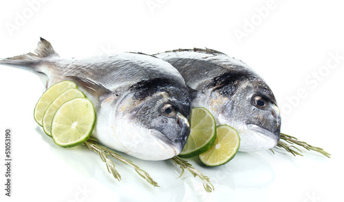 La pose en embrasure Poisson Two fish dorado with lemon isolated on white