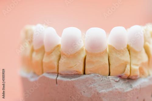 Valokuvatapetti Zircon teeth