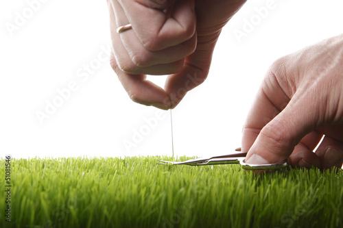 Fotografering  Junger Mann schneidet englischen Rasen