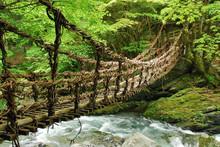Pont De Lianes Et Bambou Kazur...