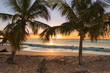sunset beach palm trees waves