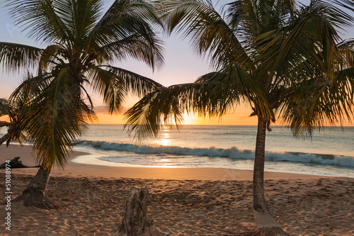 Foto-Kissen - sunset beach palm trees waves (von Baltazar)