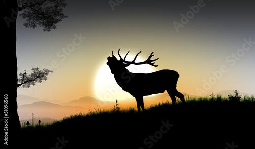 die Silhouette eines großen Hirsch im Wald vor Bergpanorama mit untergehender Sonne