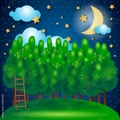 Door stickers Forest animals Nocturnal