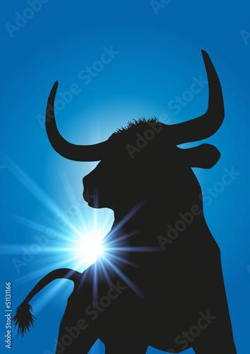 Fotografie, Obraz  Taureau rayons de soleil