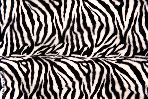 Recess Fitting Zebra Zebra Pattern