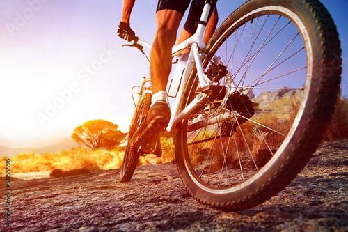 Leinwand Poster Mountain Bike Mann