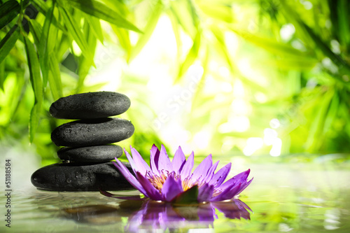 Garden Poster Lotus flower Spa still life with lotus and zen stone on water