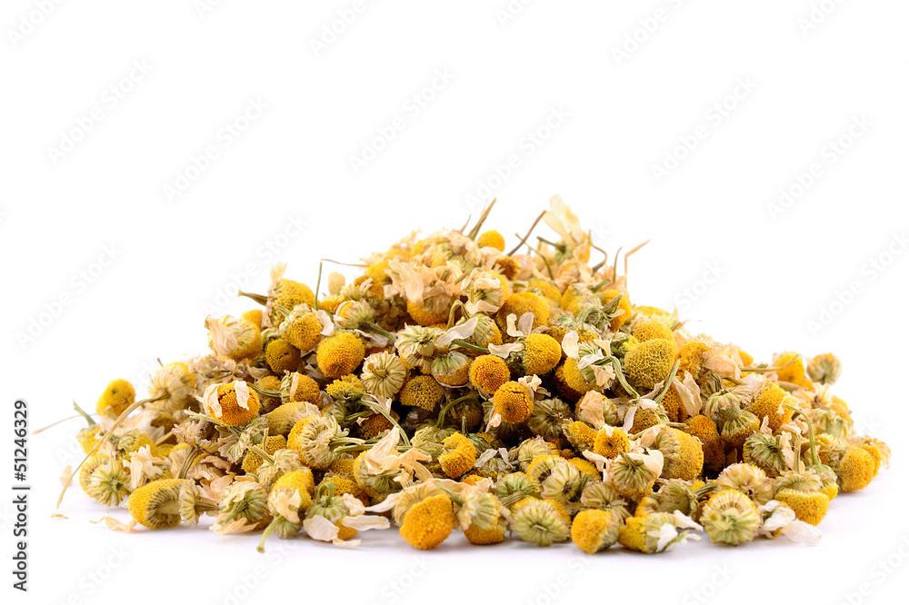 Fototapety, obrazy: Pile of chamomile isolated on white background