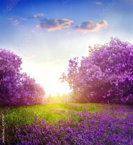 Deurstickers Lente spring landscape