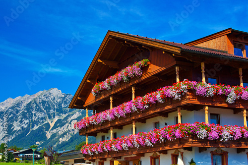 Garden Poster Brown Alps traditional house
