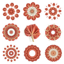 Begonia Leaf  Kaleidoscopic Patterns, Source Image Is In Center