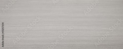 Texture grigio Canvas Print