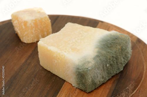 Verschimmelter Käse