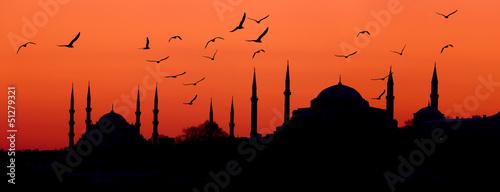 Fototapeta premium Panoramę Stambułu