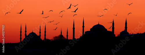 Foto auf AluDibond Koralle Estambul skyline