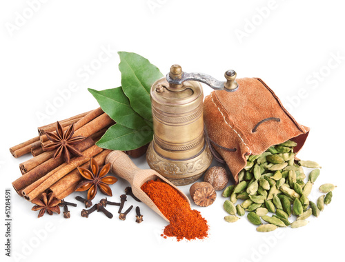 Canvas Prints Spices Different spices isolated on white