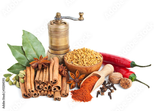 Canvas Prints Spices Different spices and herbs isolated on white