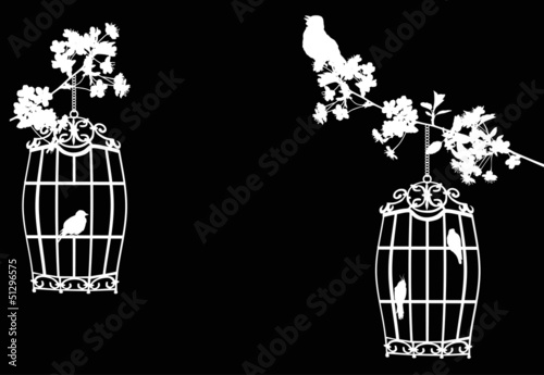 Poster Birds in cages tree branches and birds in cages on black