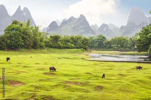 Foto op Aluminium Guilin Countryside landscape in Yangsho, China