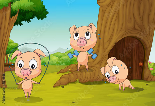 La pose en embrasure Forets enfants Three pigs at the forest