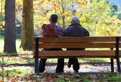 pareja de ancianos sentados en un banco otoño  3130f Canvas Print