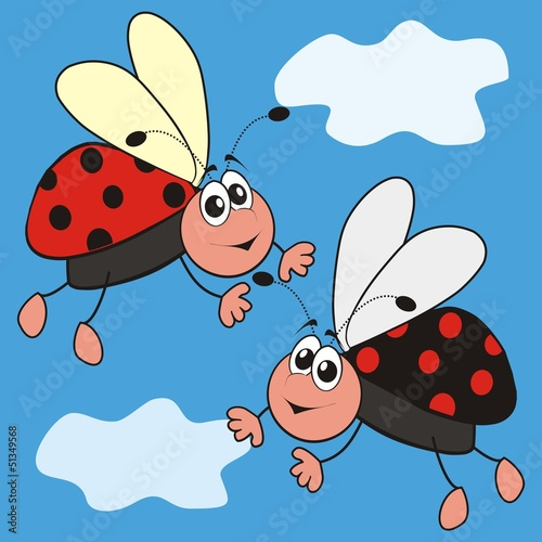 Aluminium Prints Ladybugs ladybirds