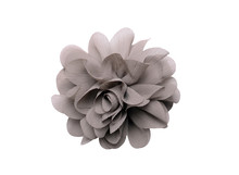 Gray Artificial Flower Isolate...