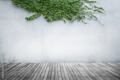 Foto op Plexiglas Wand Old wall and green ivy on wood floor background