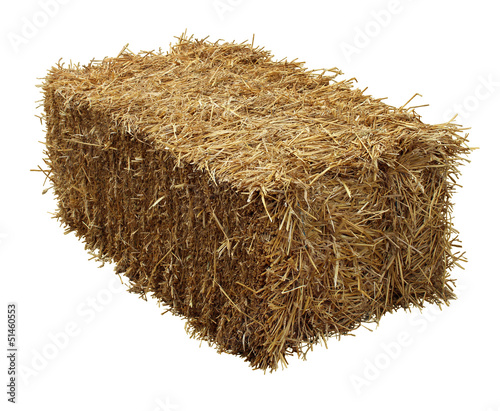 Bale Of Hay Canvas Print