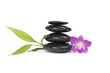 Spa stones with pink orchid and bamboo leaf