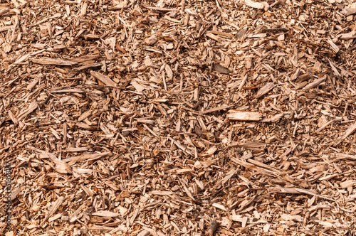Obraz na plátne Closeup of a heap of woodchips from shredded trees