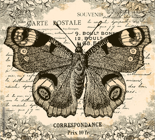 Canvas Prints Butterflies in Grunge Vintage Butterfly