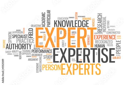 """Láminas  Word Cloud """"Expert"""""""