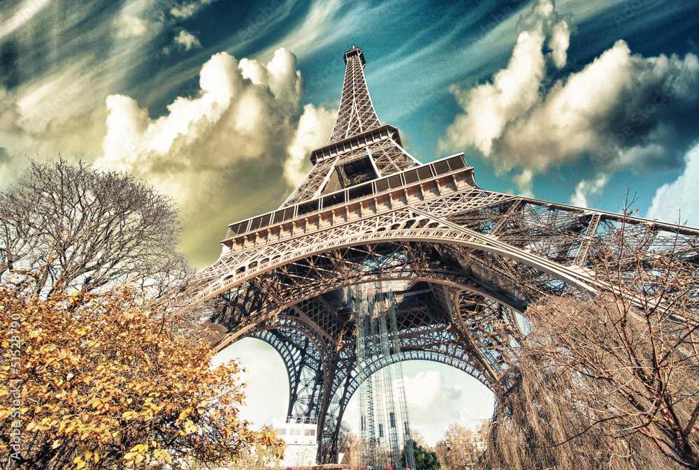 Fototapety, obrazy: Wonderful street view of Eiffel Tower and Winter Vegetation - Pa
